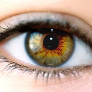 Oeil, vision, vieillissement de l'œil